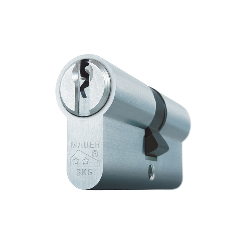 Verlengde Cilinder 41DC4-S-NI 31/46