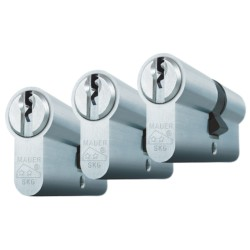 Cilinder 41DC2-S-NI 31/31 Set van 2